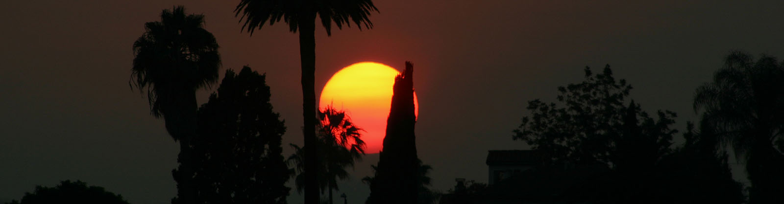 sunset0730.jpg
