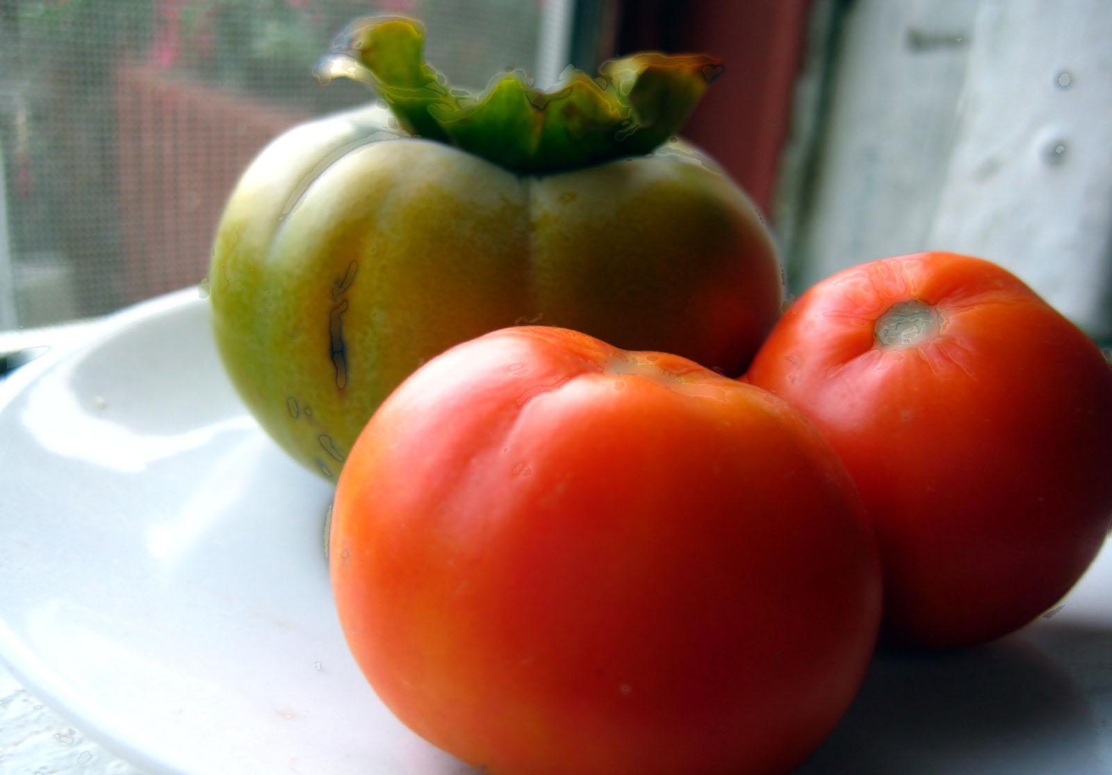 fruitsill.jpg